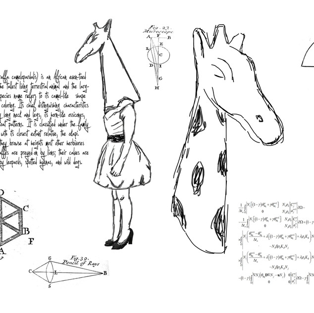 Giraffe print a2.jpg