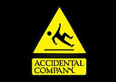8-accidental company.jpg