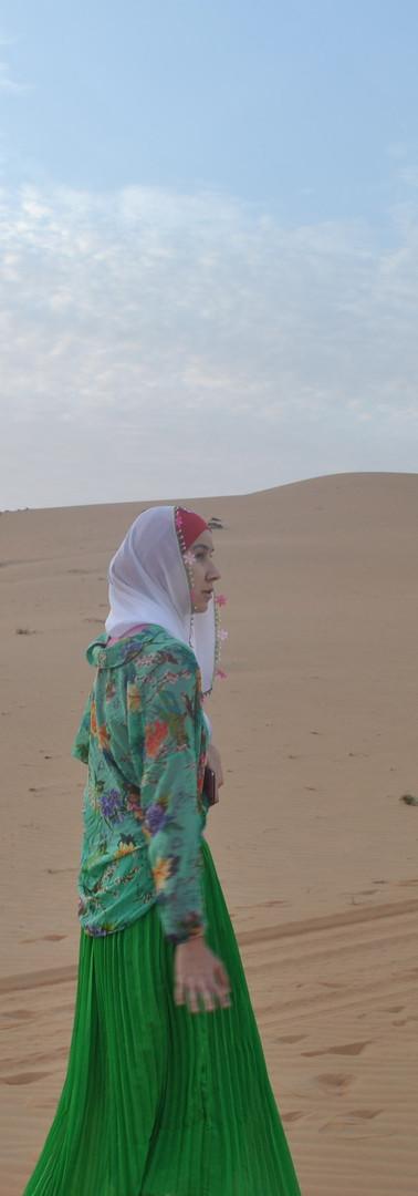 Liwa Desert, 2013