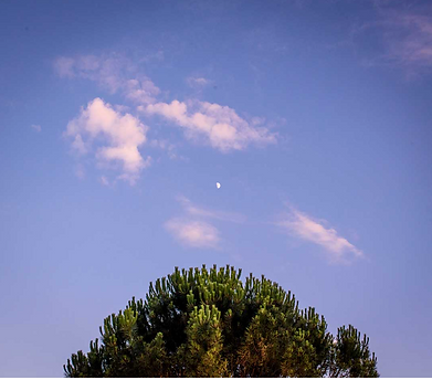 Moon crescent in purple sky in France