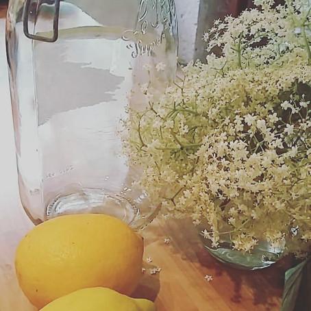 De saison : sirop de fleurs de sureau
