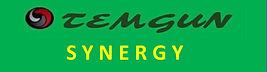Temgun Synergy 9.1.jpg
