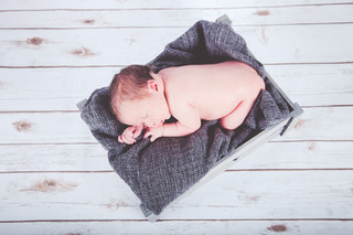 Newborn Freddie