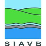 SIAVB.jpg