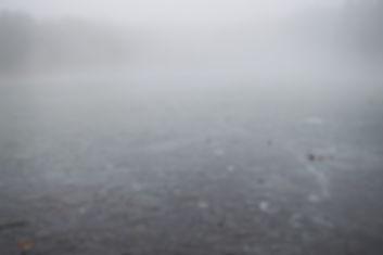fog-2.jpg