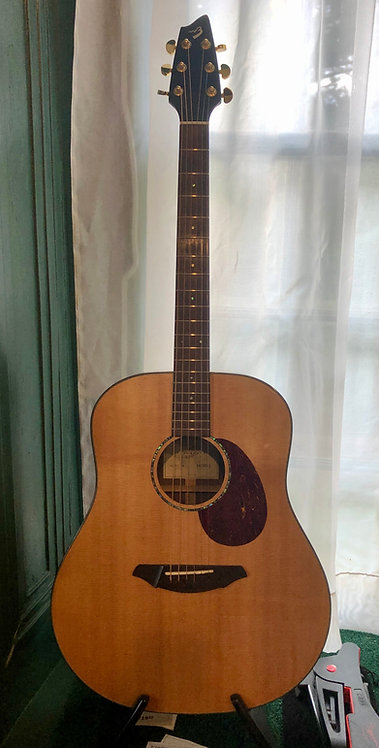 Breedlove AD/20 SM Acoustic/Electric Guitar