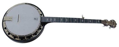 Goodtime Artisan Resonator Banjo