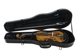 Amati Sandner 3/4 Violin Outfit