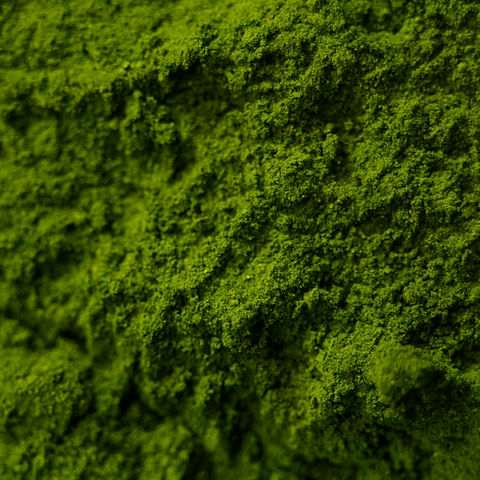 spirulina-powder.jpg