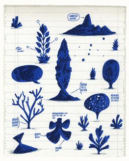 Cape Blue #1