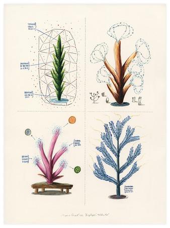 Encyclopedia Turbatio IVa | 2016