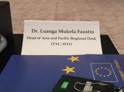 Prof. Dr. Faustin Luanga Mukela
