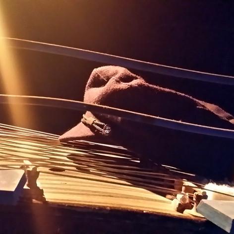cymbalum des mers.jpg
