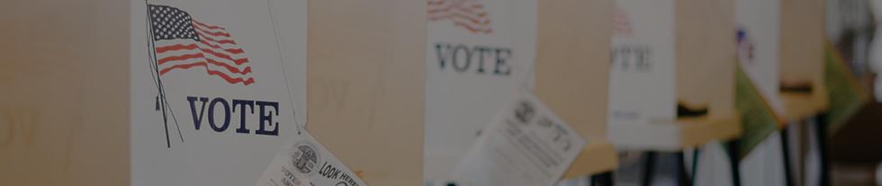 Copy of fl votes 2020 V.png