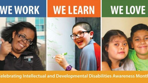 Florida's iBudget Waiver Redesign and Potential Harm for Floridians with Developmental Disabilit