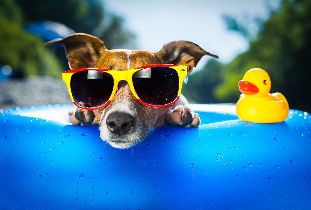 Summer Sales Slump