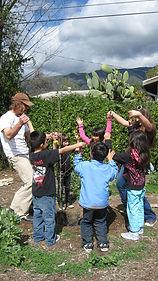 Fruit Tree Planting 3.jpg