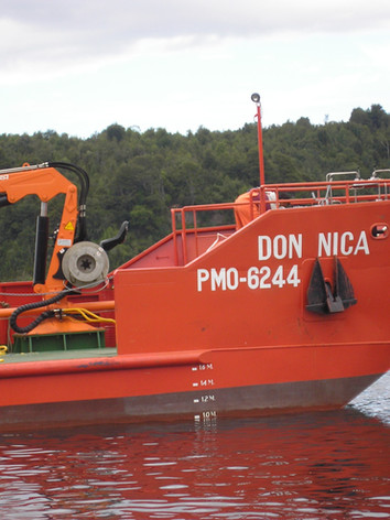 Don Nica