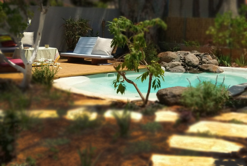 בריכת-שחייה-בעיצוב-טבעי.jpg