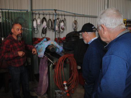 First - Around The Sheds Report Saturday 20 October 2018