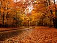 Seasons Change & so do YOU!
