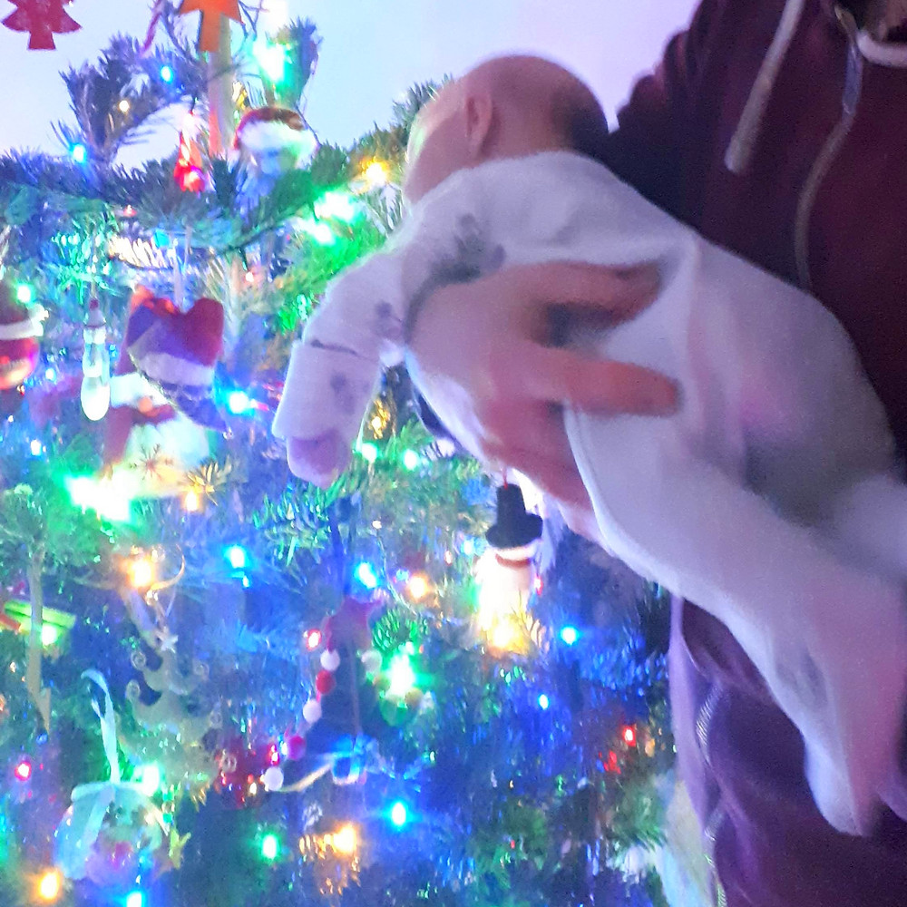 Newborn baby looking at a Christmas tree