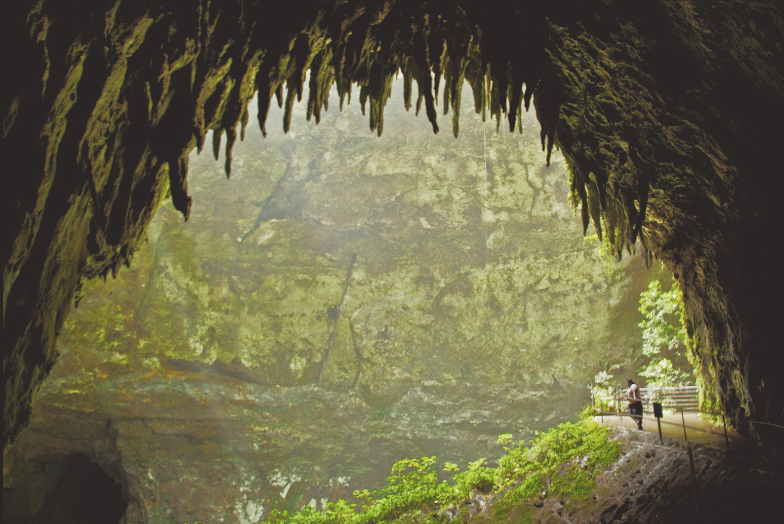 Camuy River Cave Park