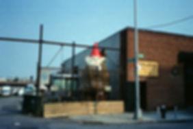 Analog Film Photography