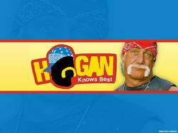 HOGAN KNOWS BEST - VH1