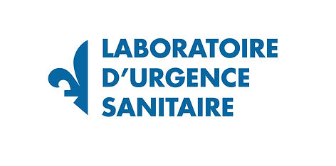 Datsit Sphère / TVA / Série Épidémie I / Logo