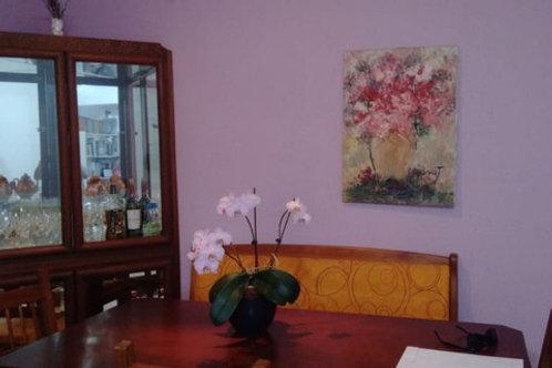 Apartamento - Jardim Melo - 3 Dormitórios