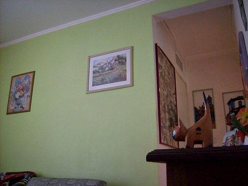 Apartamento - Jardim Germânia -2 Dormitórios