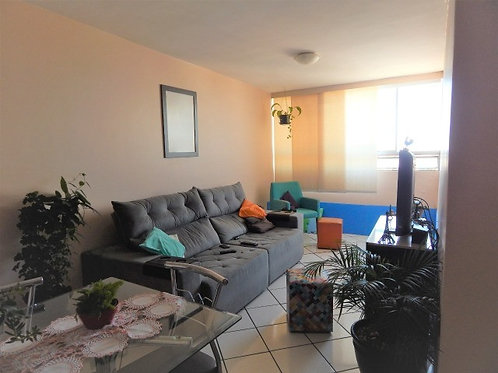 Apartamento - Jardim Independência - 3 Dormitórios