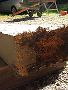 Rotted Decking