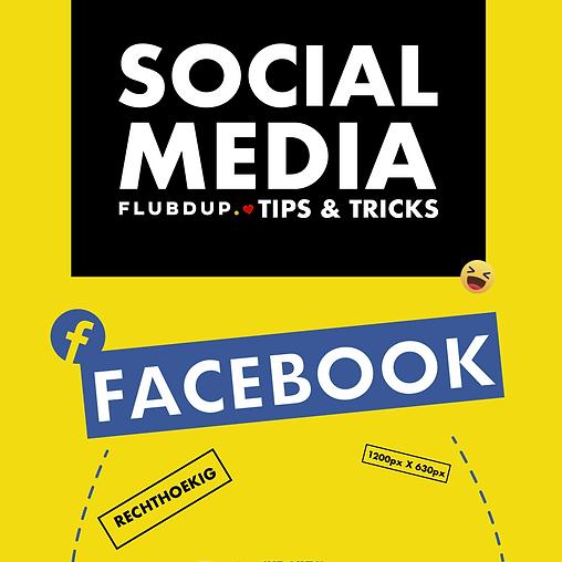 flubdup-christophe-socialmedia-ameno-inf