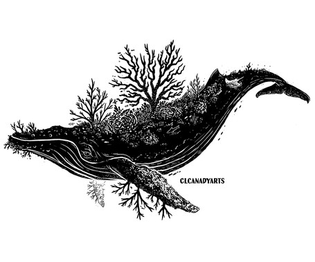 coralwhale black clcanadyarts