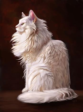 Ivory cat