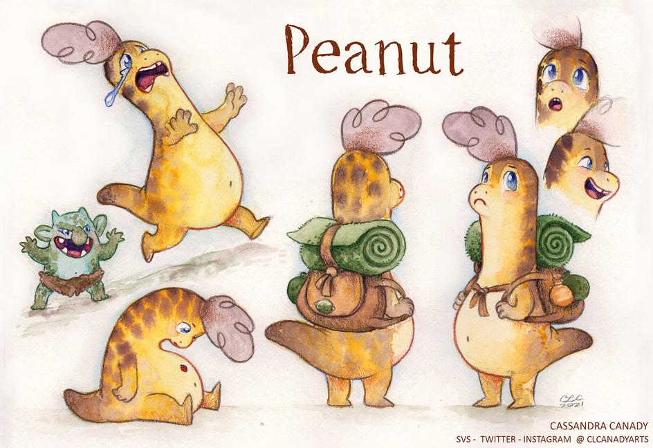 peanut traveler sm 3.jpg