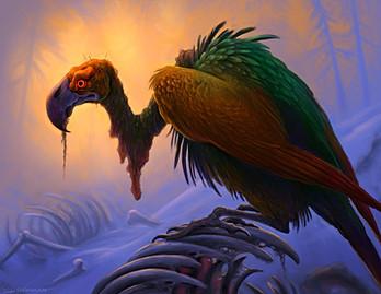 rainbow vulture.jpg