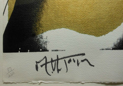 Mick Jagger signature
