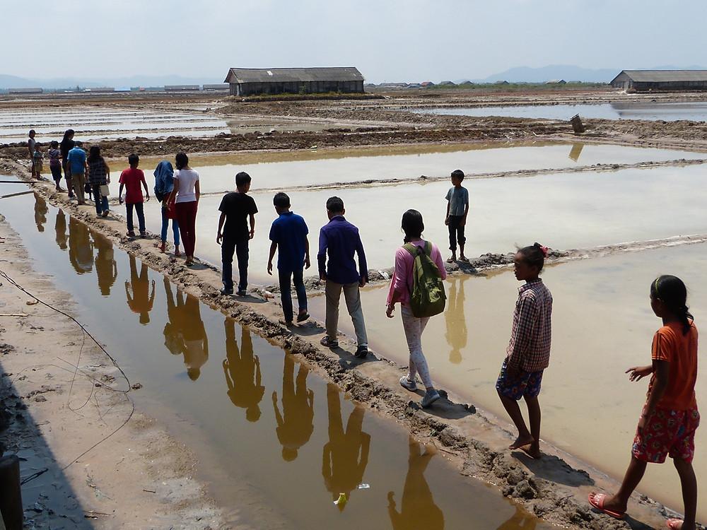 Salt fields tour