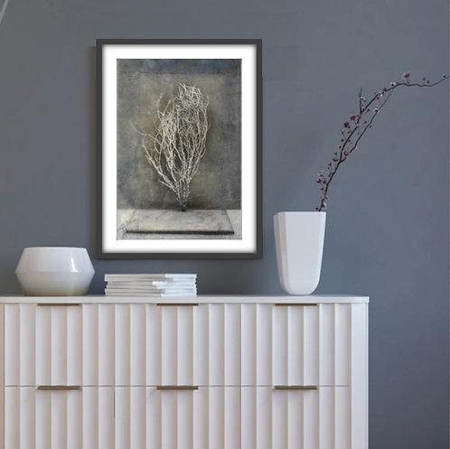 DESERT IKEBANA III - FINE ART PAPER