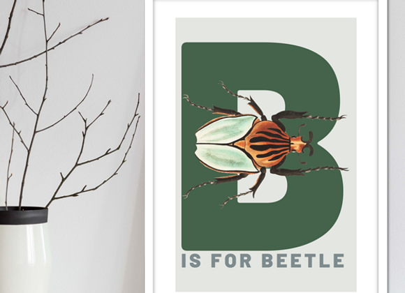 LETTER B FOR BEETLE