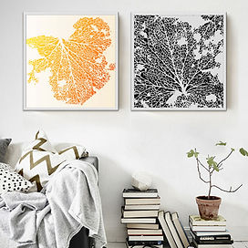 CANVAS ART CORAL BLACK AND ORANGE