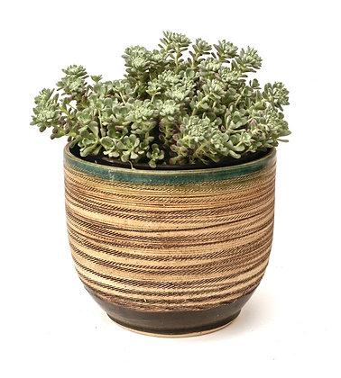 cache pots
