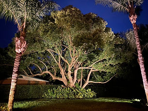Service and Repair for Outdoor Lights Systems Orlando Florida