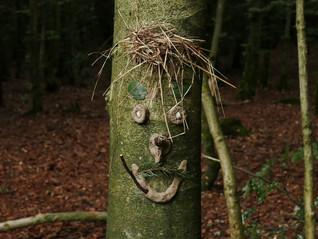Werken und Bauen im Wald - war das ein Spass!