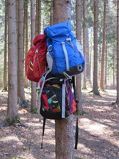 Waldtag Waldschule