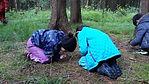 Walddetektive Kindergeburtstag im Wald