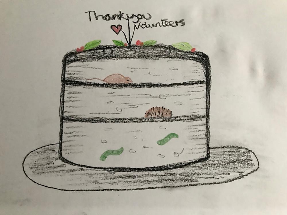 Wildlife cake drawing
